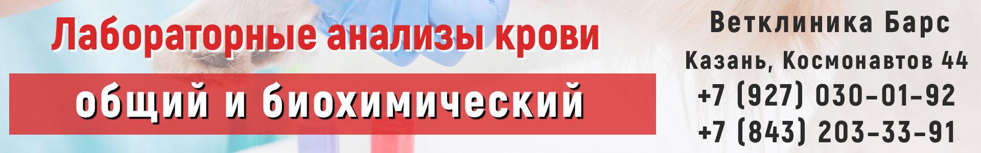 Общий и биохимический анализы крови